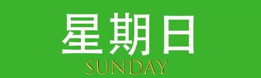 """2020年11月29日微语简报:制作传播""""大胃王""""视频将受惩处"""
